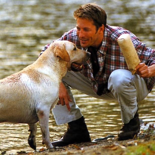 perros-y-amos