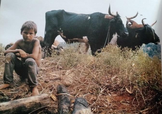 En 1993 viajó a Cuba para hacer fotos en Playa Girón, pero José Luis aprovechó un alto en el camino para retratar a este niño con sus bueyes